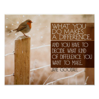 Poster Différence que vous voulez faire
