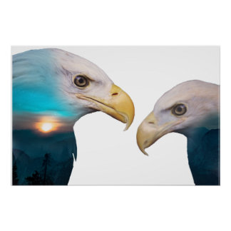 Poster Double exposition d'Eagle