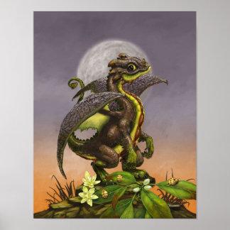 Poster Dragon 11x14 d'avocat (4x6 et se lèvent)