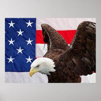 Poster Eagle chauve avec le drapeau américain