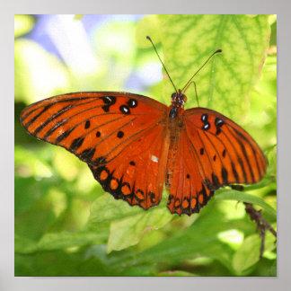 Poster Écartez votre copie d'ailes