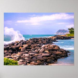 Poster Éclaboussure tropicale hawaïenne d'île