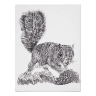 Poster Écureuil de gardiens de trouveurs