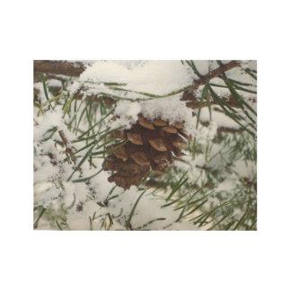 Poster En Bois Photographie de nature d'hiver du cône I de pin de