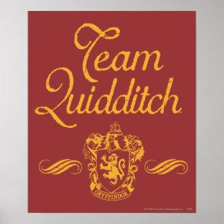 Poster Équipe QUIDDITCH™ de Harry Potter |