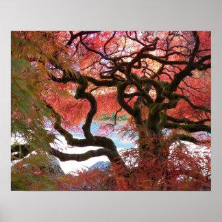 Poster Érable japonais Gnarly floral
