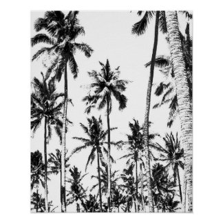 Poster Été tropical de palmier noir et blanc