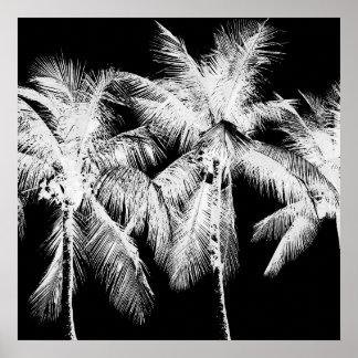 Poster Été tropical Hawaï de palmier noire et blanche