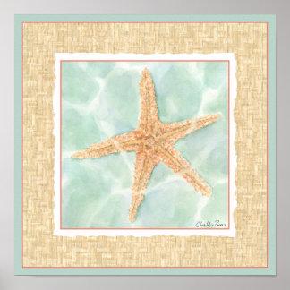 Poster Étoiles de mer nautiques dans l'eau