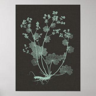 Poster Étude de nature de menthe et de charbon de bois I