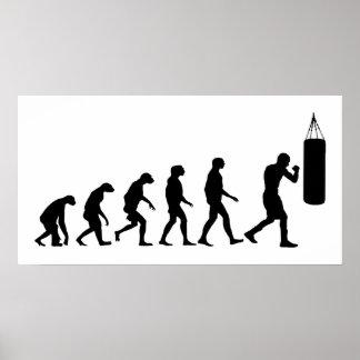 Poster Évolution de la boxe