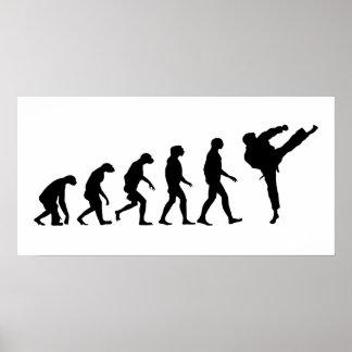 Poster Évolution du karaté