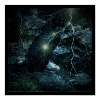 Poster Faune Eagle audacieux courageux de foudre d'orage