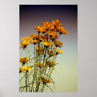 Poster Fédération de fleurs