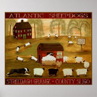 Poster Ferme irlandaise de chiens de berger.