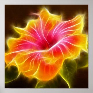 Poster Fleur colorée lumineuse de ketmie