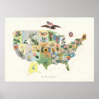 Poster Fleur d'état vintage d'USA Map (1911)