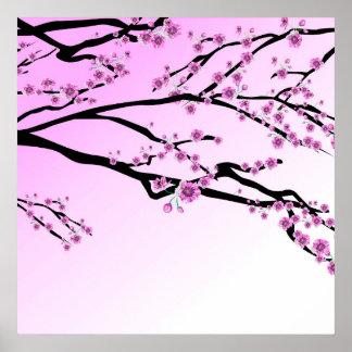 Poster Fleurs de cerisier pourpres Sakura