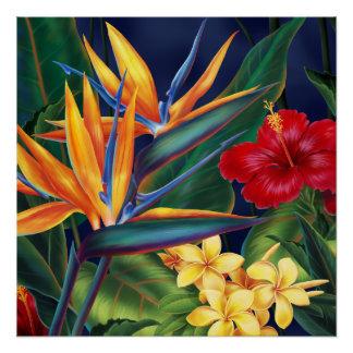 Poster Floral hawaïen de paradis tropical