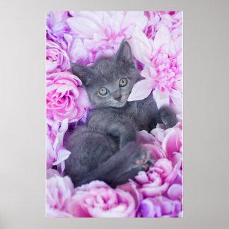 Poster Floral pourpre de chaton de couvreur