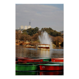 Poster Fontaine Afrique du Sud de lac zoo