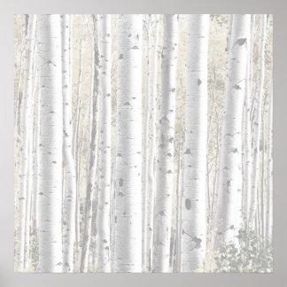 Poster Forêt rustique d'arbre de bouleau blanc d'hiver