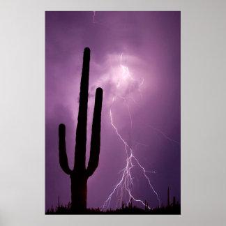 Poster Foudre et cactus pourpres, AZ