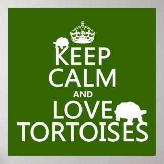 Poster Gardez le calme et aimez les tortues (toute