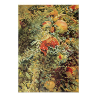 Poster Grenades II par Sargent, art vintage de jardin