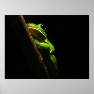Poster Grenouille verte d'escalade sur l'arrière - plan