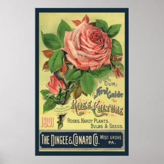 Poster Guide vintage de l'art rose de couverture de livre