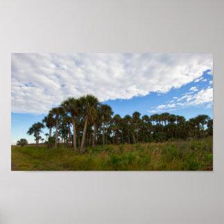 Poster Hamac de prairie de Kissimmee, la Floride