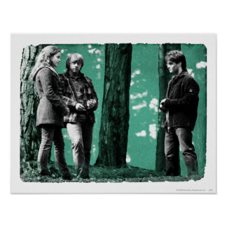 Poster Hermione, Ron, et Harry 1