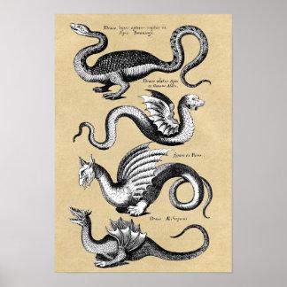 Poster Histoire de diagramme de mur de dragons