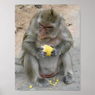 Poster Il est le mien ! ! … Singe de Macaque thaïlandais