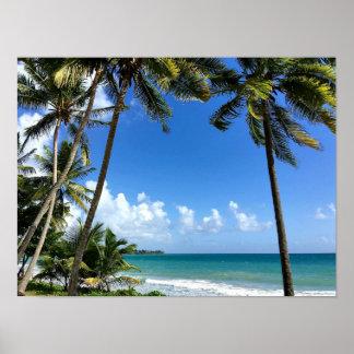 Poster Île des Caraïbes, la Martinique