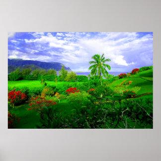 Poster Île hawaïenne tropicale de Kauai