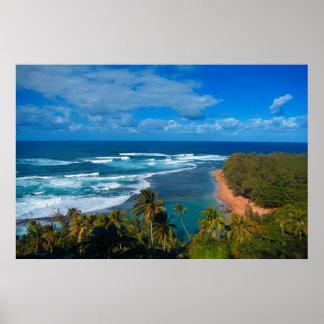Poster Île tropicale hawaïenne