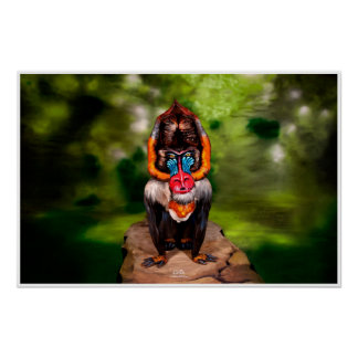 Poster Illusion Bodypainting de Mandrill