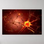 Poster Image conceptuelle du neurone 1