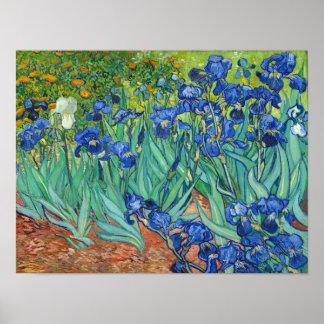 Poster Iris par Van Gogh