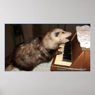 Poster J'affiche d'opossum de perle