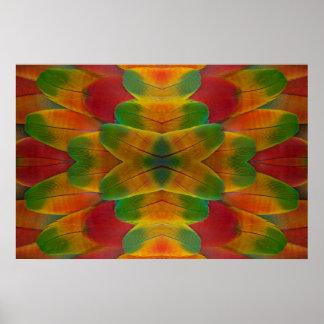 Poster Kaléidoscope de plume de perroquet d'ara