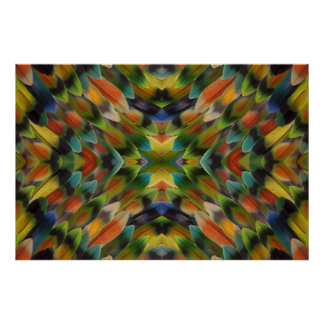 Poster Kaléidoscope de plume de perruche