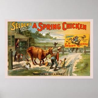Poster La farce drôle de Selden, une affiche de poulet de