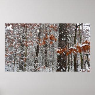 Poster La neige a couvert la photographie de nature