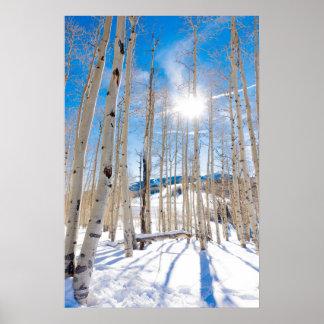 Poster La neige a couvert les bois dans le Beaver Creek,
