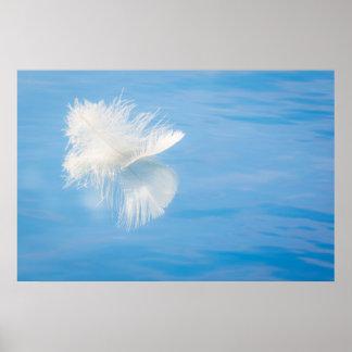 Poster La plume blanche réfléchit sur l'eau | Seabeck, WA