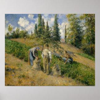Poster La récolte, Pontoise