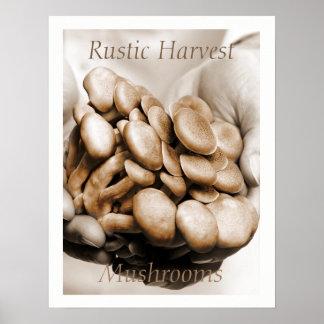 Poster La récolte rustique répand photographie